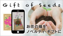 Gift of seeds - 花の種をノベルティ・ギフトに